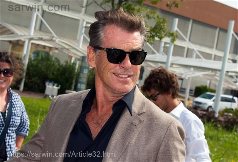 pierce brosnan + persol